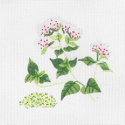 click here to view larger image of Botanical Spice Tile - Oregano (hand painted canvases)