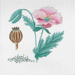 click here to view larger image of Botanical Spice Tile - Poppy Seed (hand painted canvases)