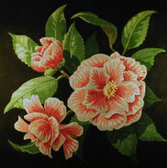 click here to view larger image of Peppermint Camellia (hand painted canvases)