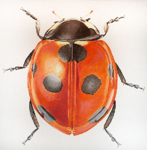 click here to view larger image of Big Bugs - Lady Bug (hand painted canvases)