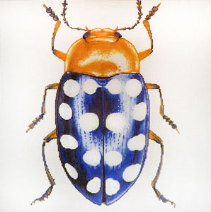 click here to view larger image of Big Bugs - Blue with White Dots (hand painted canvases)