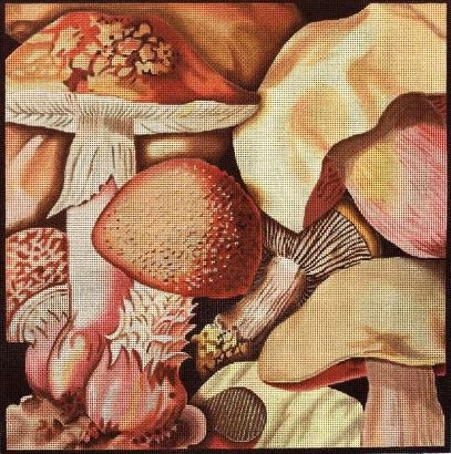 click here to view larger image of Mushroom Collage 2 (hand painted canvases)