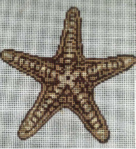 click here to view larger image of Box Tops - Beige Starfish (hand painted canvases)