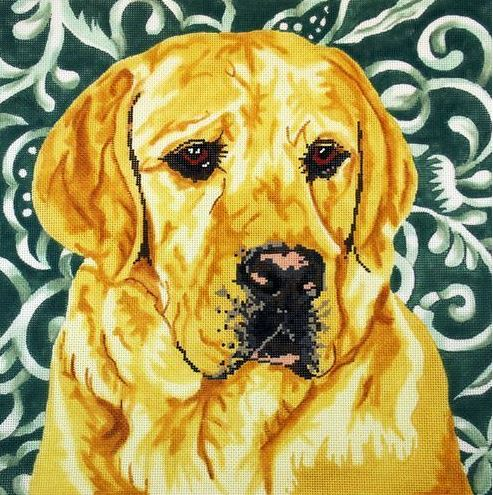 Yellow Lab/Silk Background - click here for more details