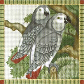 click here to view larger image of African Greys  (hand painted canvases)