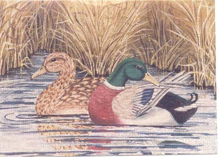 click here to view larger image of Mallards in Reeds (hand painted canvases)