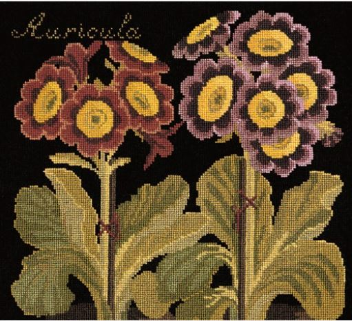 click here to view larger image of Auricula (Black Background) (needlepoint kits)
