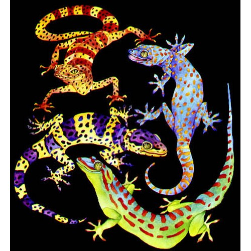 click here to view larger image of El Gecko (hand painted canvases)