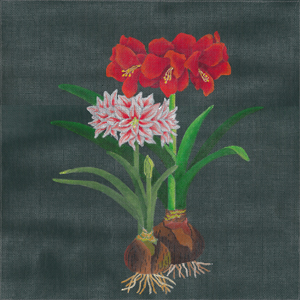 click here to view larger image of Giant Amaryllis (hand painted canvases)