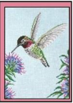 click here to view larger image of Annas Hummingbird - 13ct (hand painted canvases)