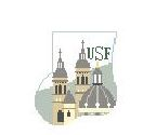 click here to view larger image of U Of San Francisco Mini Sock (hand painted canvases)
