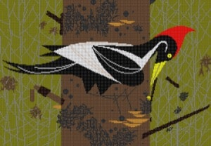 click here to view larger image of Ivory Billed Woodpecker (hand painted canvases)